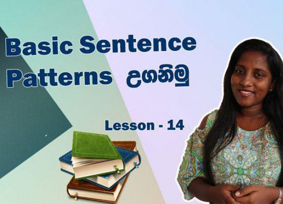 Basic Sentence Patterns in English